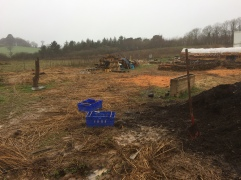 Piles of compost to create coppice's of fruit bushes